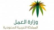 مكتب العمل يضبط مجموعة من المخالفات في محافظة العلا