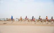المهرجان الوطني للتراث والثقافة يختتم سباقات المصيف بالطائف