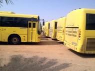 """""""التربية والتعليم"""" تضم ( 3300 ) حافلة جديدة إلى أسطول النقل المدرسي الحكومي المجاني"""