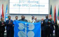 وزير الطاقة يرأس اجتماع منظمة أوبك في فيينا