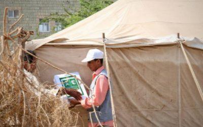 مركز الملك سلمان للإغاثة يوزع 3500 كرتون من التمور في محافظة تعز