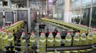 مستثمرون روس يبحثون نوفمبر المقبل إنشاء مصانع غذائية وأنابيب في السعودية