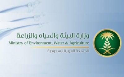 ارتفاع معدل الإنتاج لمشاريع الاستزراع المائي 131 %