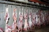 أمانة العاصمة المقدسة تكثف الرقابة على محلات الجزارة وأسواق بيع اللحوم