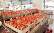 ارتفاع أسعار الطماطم الى ارقام قياسية متجاوزة نسبة 100%