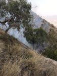 """فرق الدفاع المدني تواصل عمليات إخماد حريق جبل """"أثرب"""" بمحافظة بارق"""