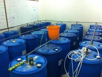 ضبط مصنع للخمور بعنيزة