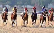 فروسية نجران تقيم سباقها الـ 17 غداً