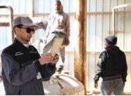 أمير تبوك يواسي أسر المتوفين في حادث طائرة المراقبة الجوية بمحمية الخنفة