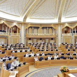 الخدمة المدنية تنفى وصول نسبة السعوديين العاملين في القطاع العام إلى 90 %
