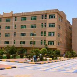 وزارة البيئة : المشروعات التي دشنها خادم الحرمين في حائل تضيف مصادر جديدة للمياه