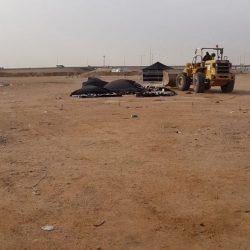 بلدية العمرة الفرعية تغلق مصنع عشوائي مخالف لدباغة الجلود في الشميسي