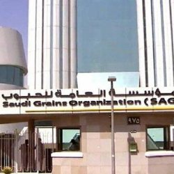 """""""السعودية وجهة المسلمين"""" مبادرة سياحة المدينة المنورة لخدمة الزوار"""