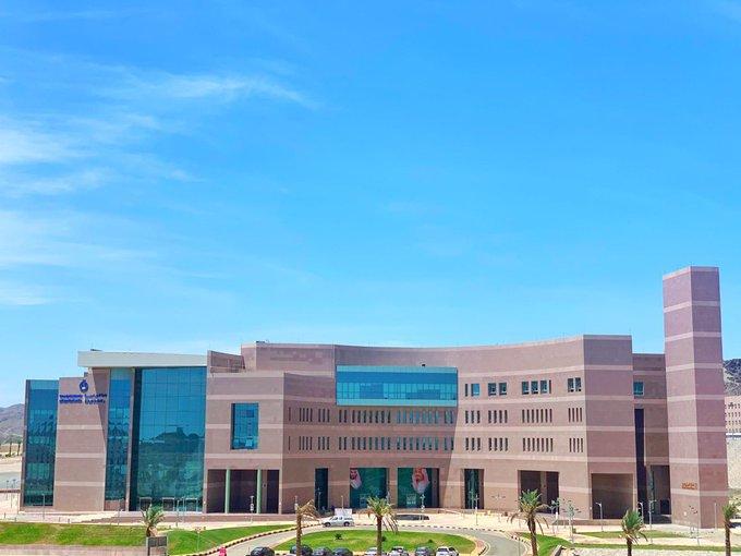جامعة الباحه تسجيل دخول 15