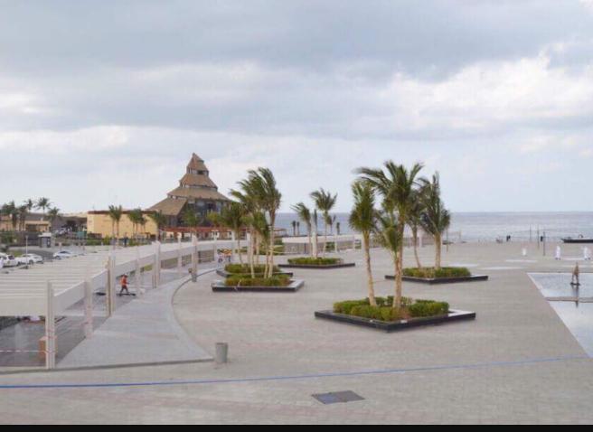 أمانة جدة: افتتاح أكبر حديقة ثقافية على واجهة جدة البحرية ...